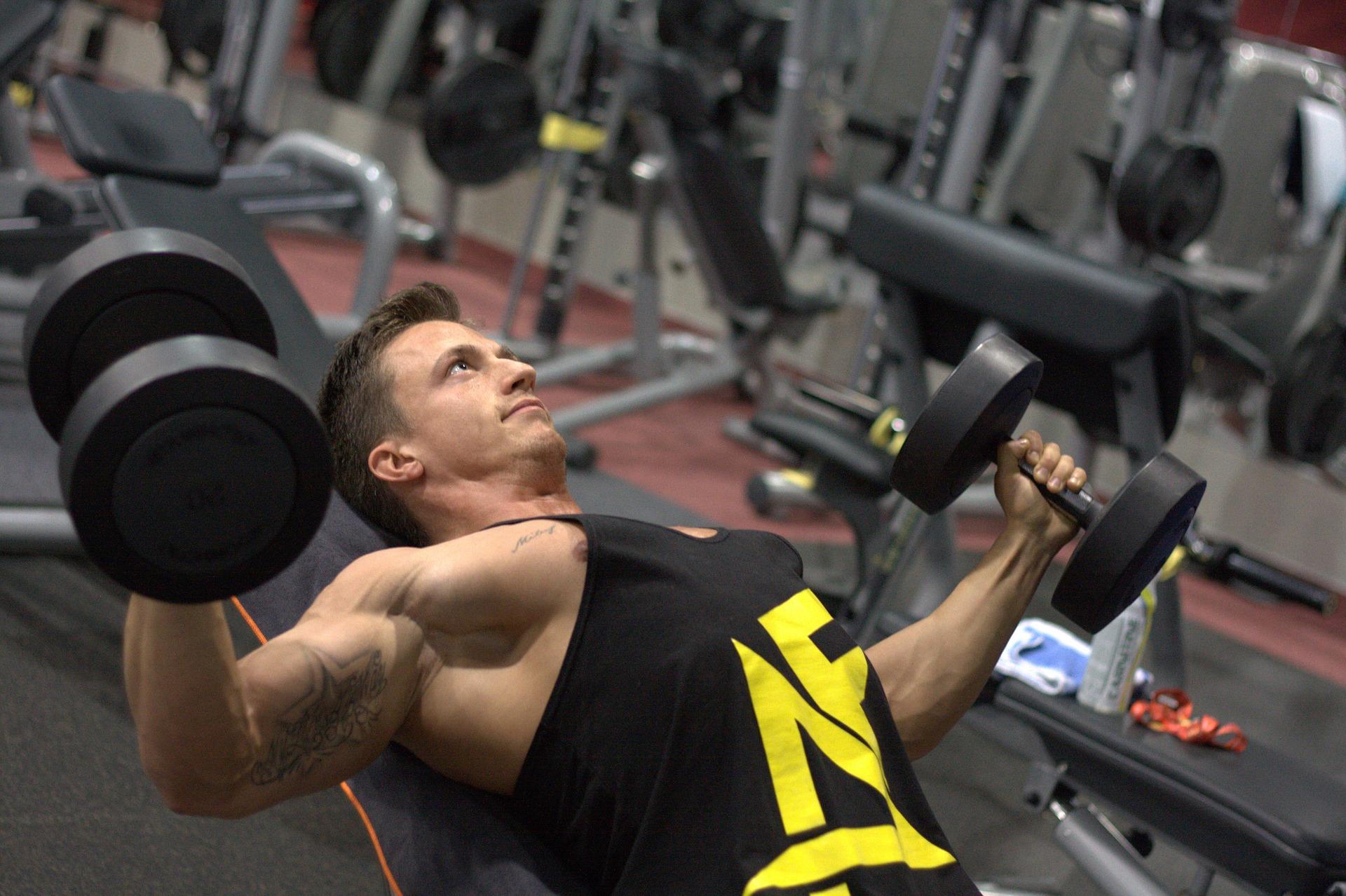 Allee edzőterem, avagy a Life1 Allee Fitness - Edzoterem.info